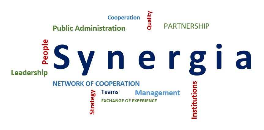 logo Synergia EN