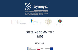 Read more about the article Steering Committee Meeting – preparations for recruitment for the 2nd edition of the SYNERGIA